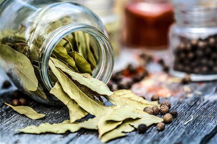 Рецепты натуральных напитков от боли в суставах