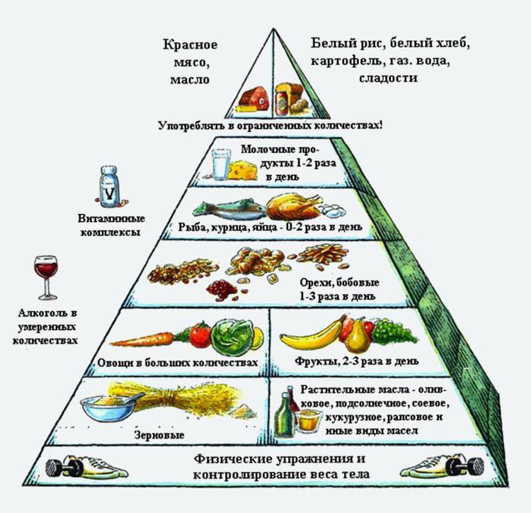 Пирамида здорового питания диета