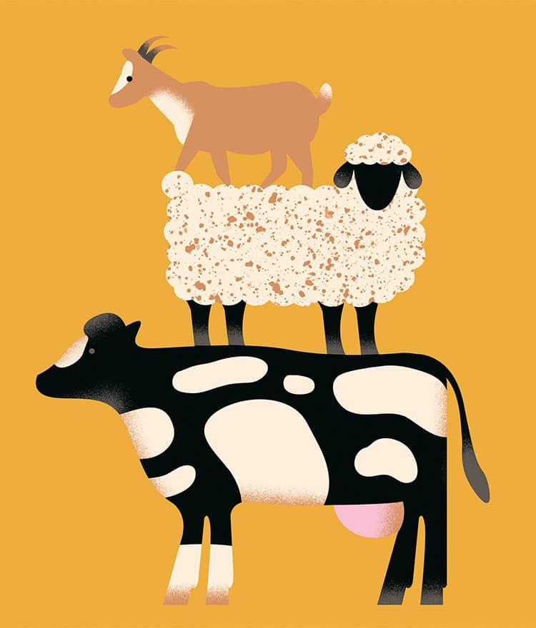Молочные продукты: Употреблять или не употреблять?